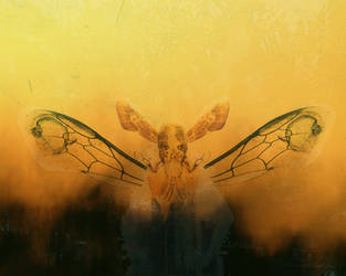 The Queen Bee by weirdink