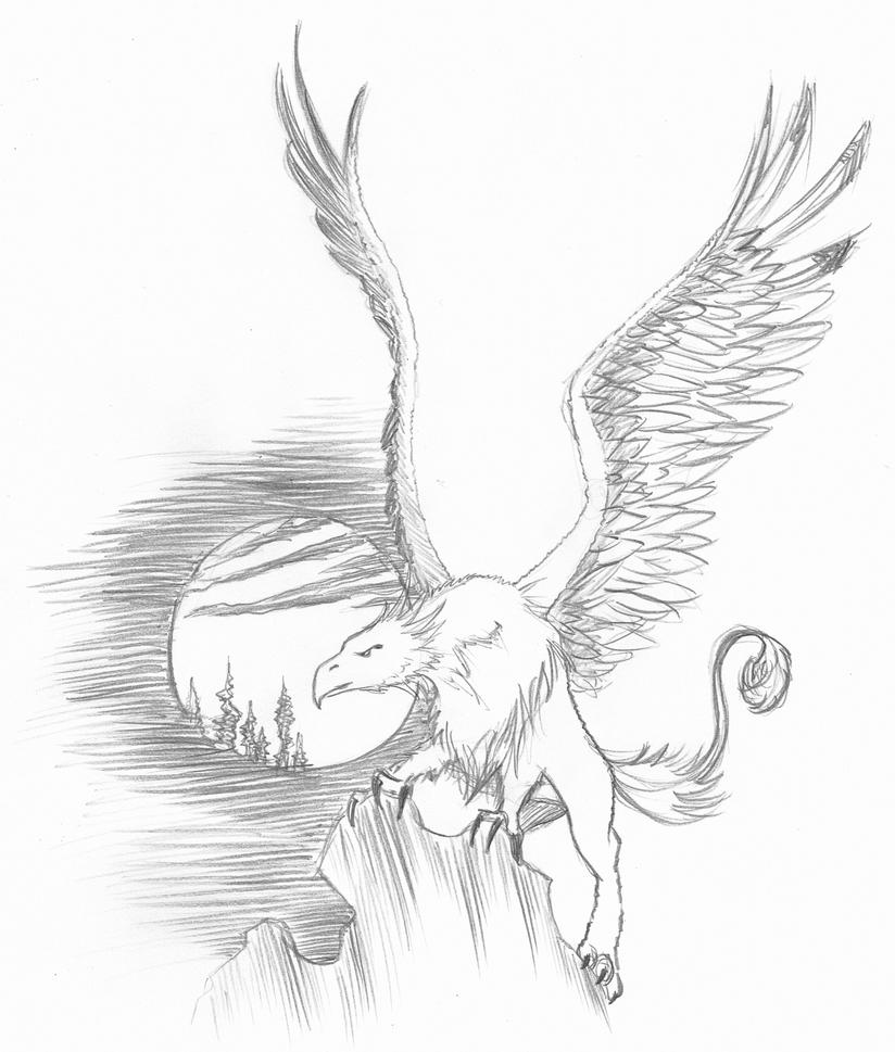 griffin drawing griffin by zolnathi images