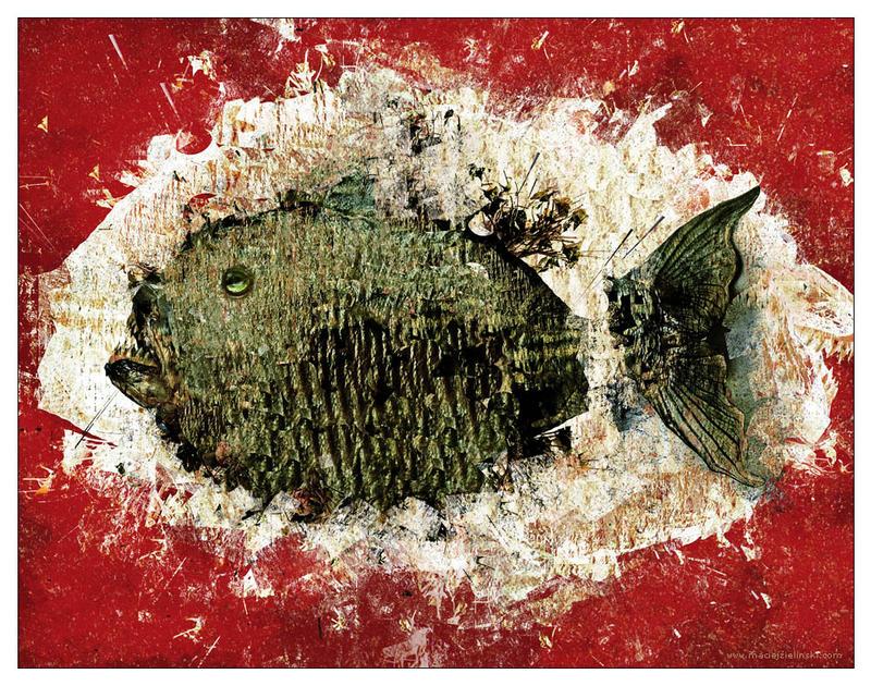 A Fish in Red by MaciejZielinski