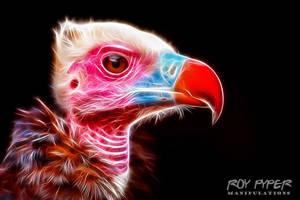 Vulture: Fractalius Re-Edit