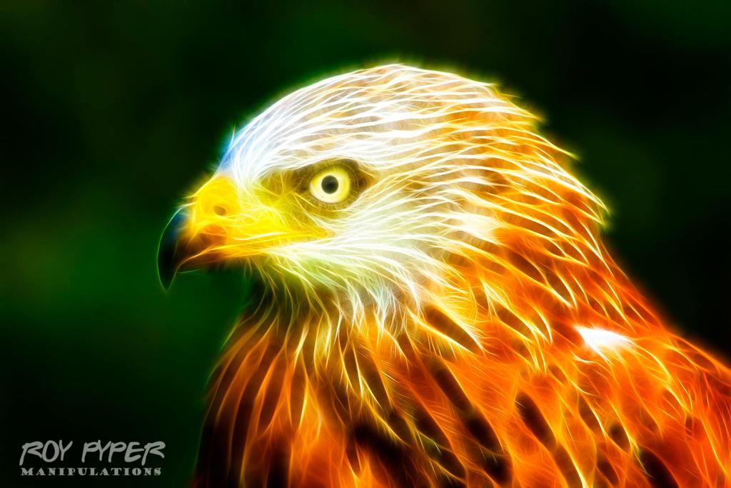 Red Kite: Fractalius Re-Edit by nerdboy69