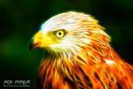 Red Kite: Fractalius Re-Edit