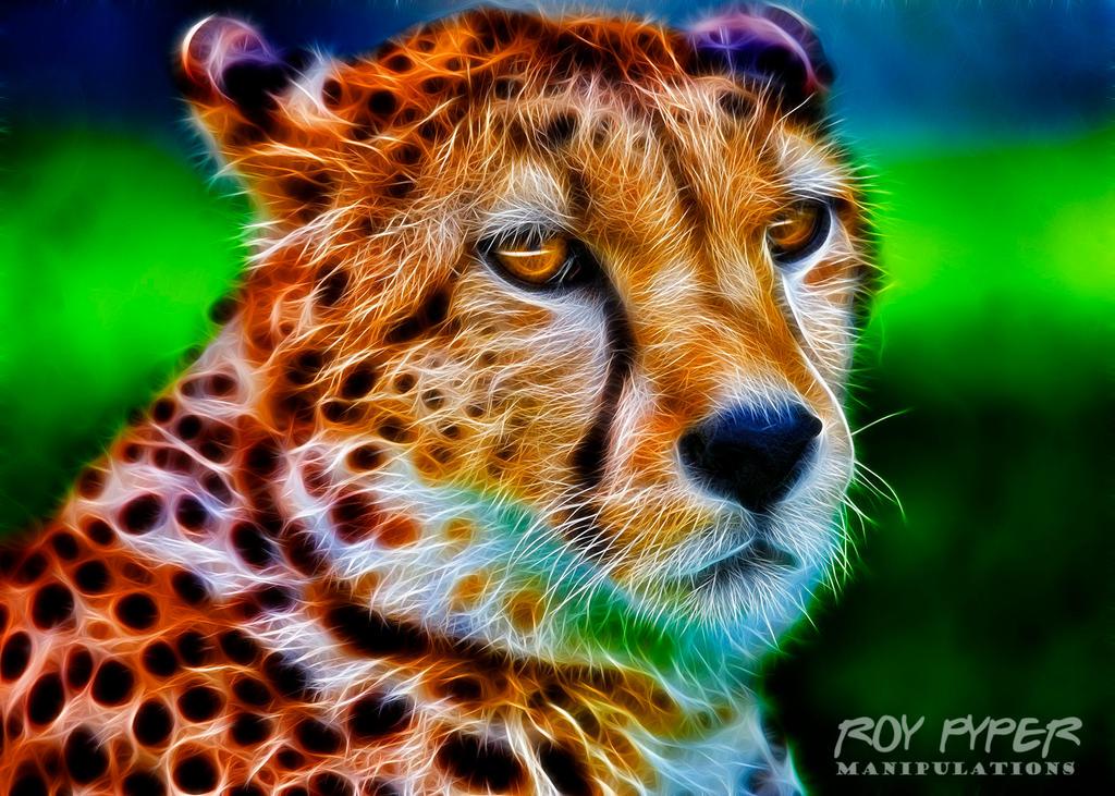 Cheetah: Fractalius Re-Edit by nerdboy69