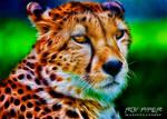 Cheetah: Fractalius Re-Edit