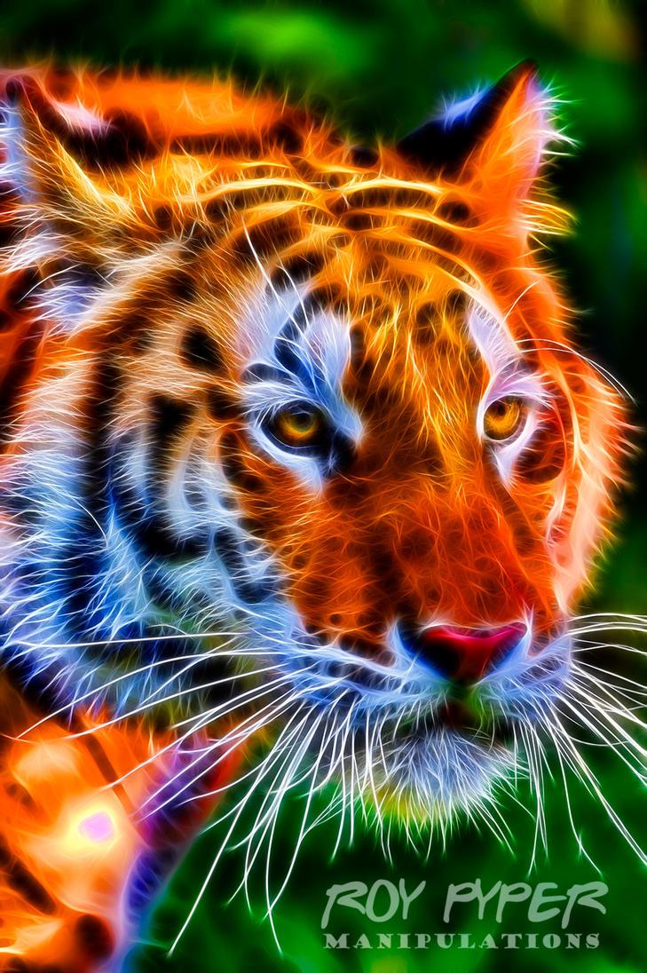 Siberian Tigress: Fractalius Re-Edit by nerdboy69