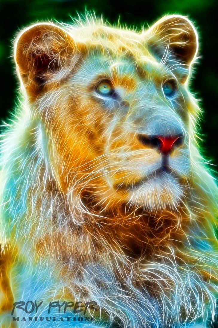 Madiba the Lion: Fractalius Re-Edit by nerdboy69