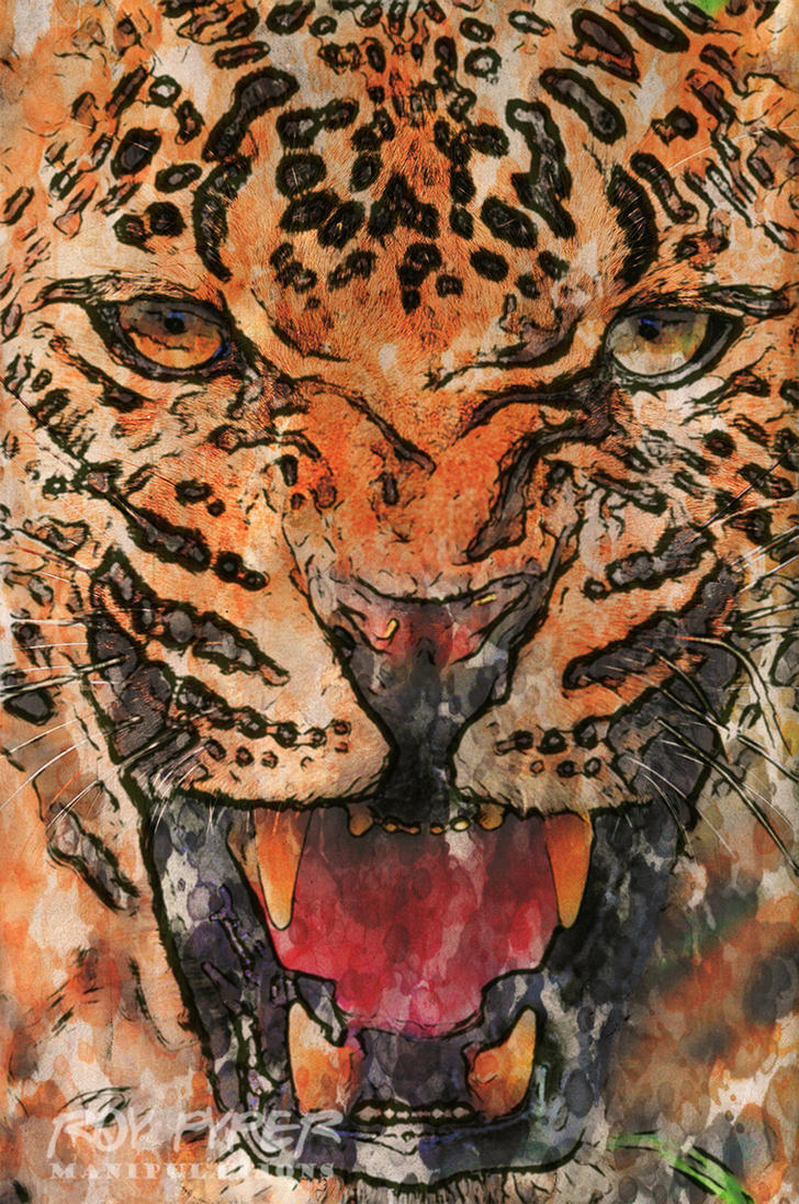 Angry Leopard: Haiku Paint Edit by nerdboy69