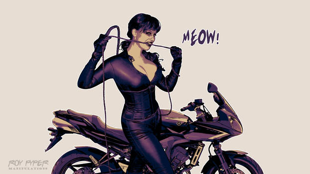 Catwoman: Dead End: Posterize Desktop Edit by nerdboy69