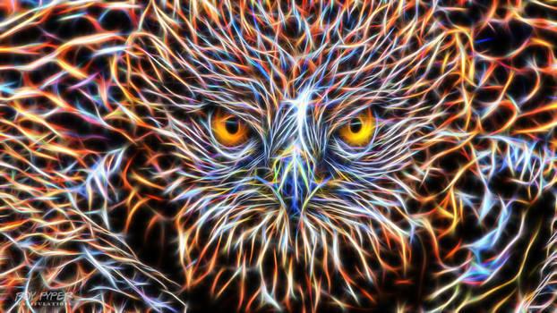 Hawk: Fractalius Wallpaper