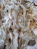 texture 063 by lucretia-stock