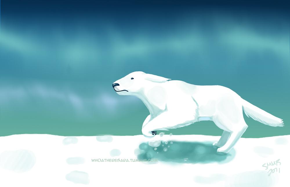 Polar Bear Dog by whoatheresara