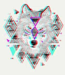 Compass-Coyote's Profile Picture