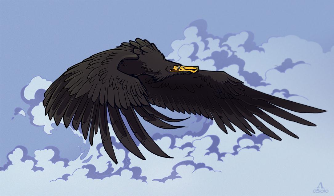 آرژانتهویس - پرندگان غولپیکر