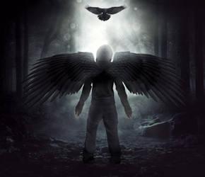 The Crow Metamorph