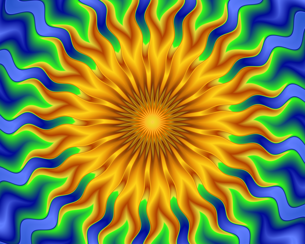 Sunflower by Judson-Cottrell