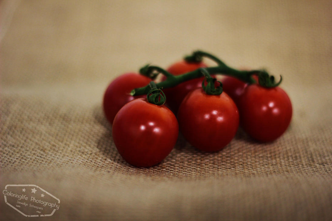 Tomatoes by LS-Coloringlife