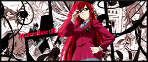 Erza Scarlet Banner Fairy Tail
