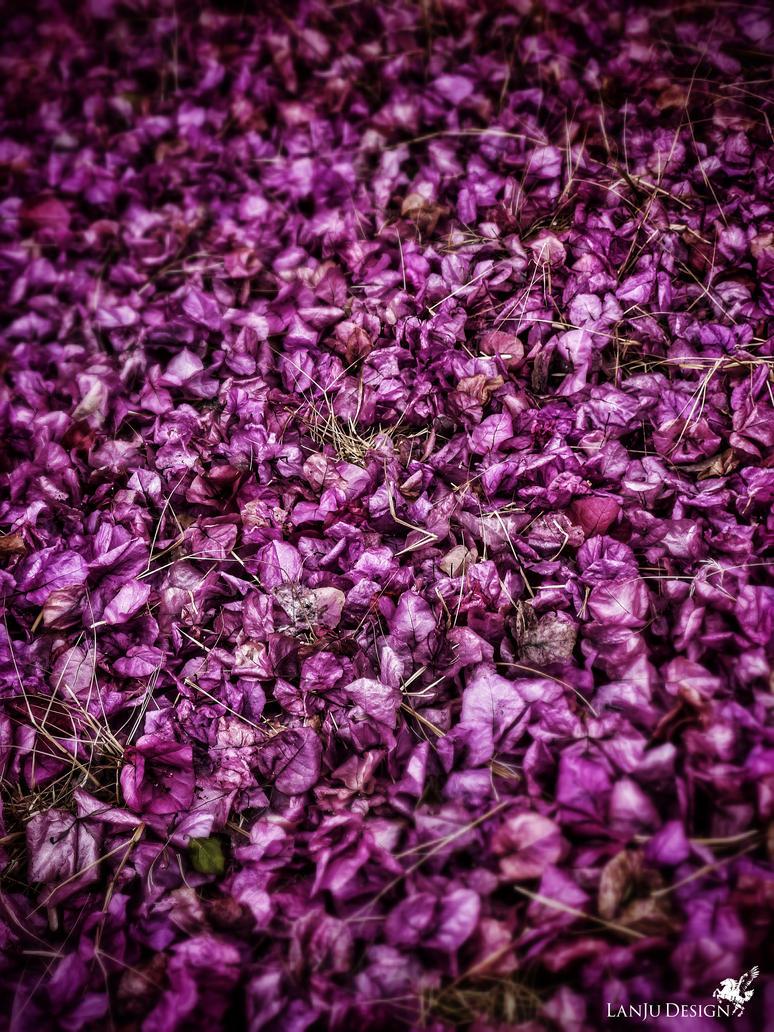 Purple carpet by LanJu85