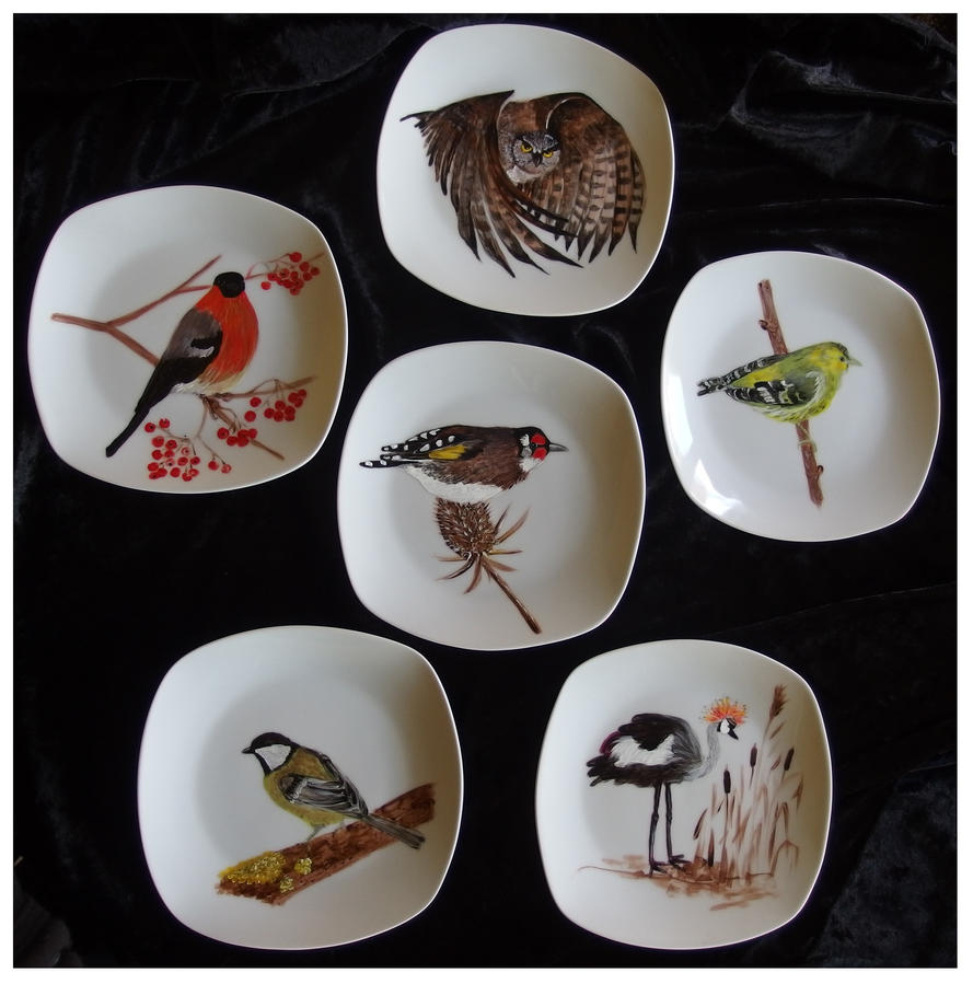 The birds by Xantosia