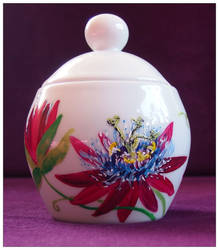 Passiflora by Xantosia