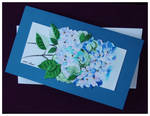 Hydrangea by Xantosia