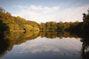 Pond of Villebon - Autumn by yuushi01
