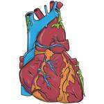 Oozing Heart