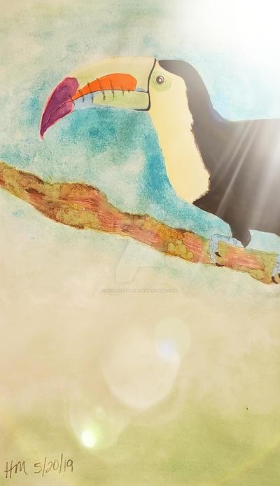 Watercolor - Toucan Edited