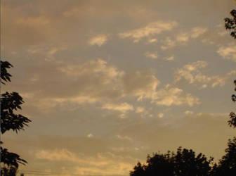 Sky by amazingkiwi