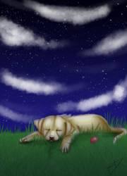 Sweet Dreams by Jindovi