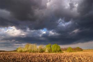 Storm's coming by padika11