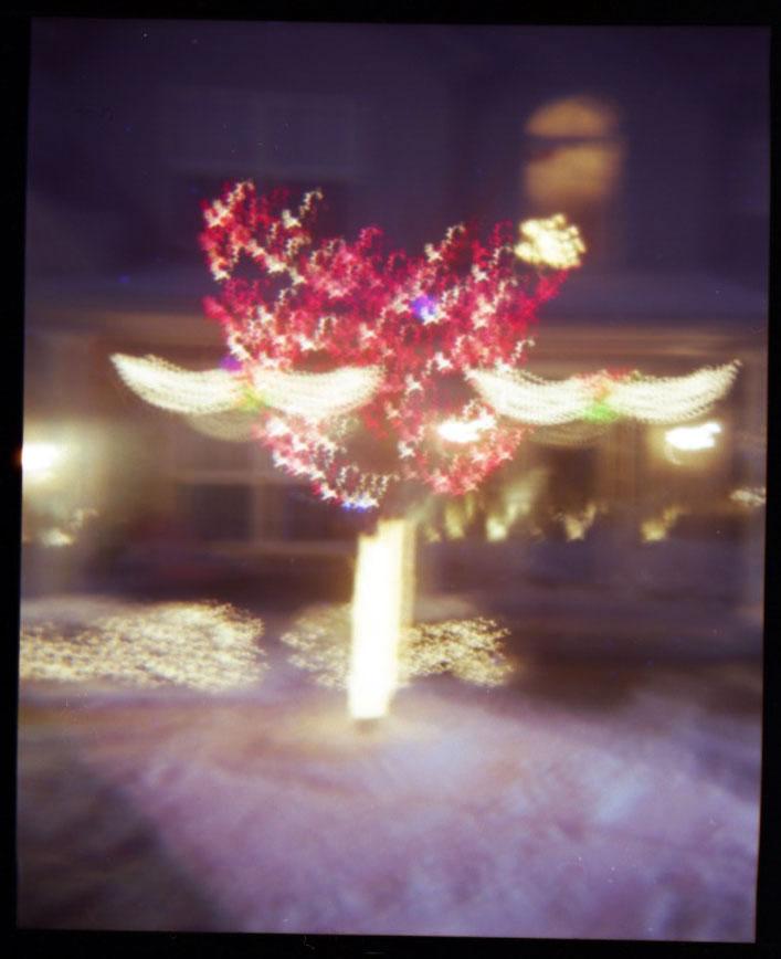 Light Up Like A Christmas Tree