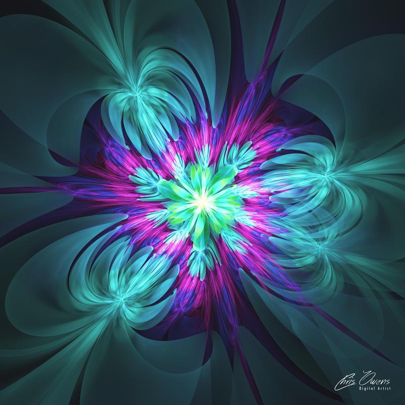 Flower Burst by owensch