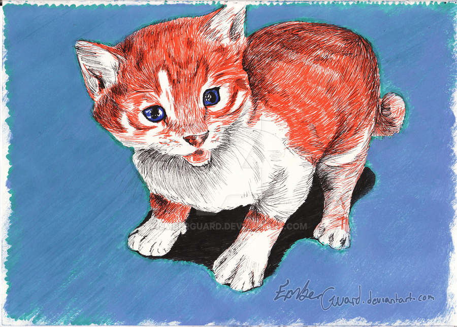 Kitten In Coloured Pen by Emberguard