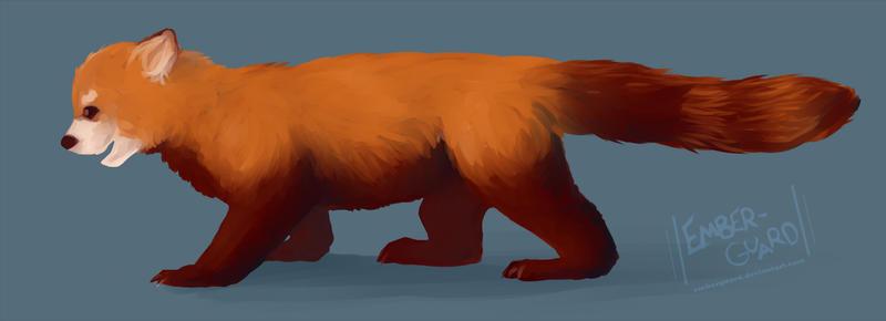 red panda wallpaper reddit