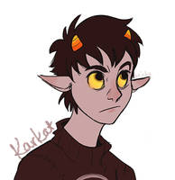 AND THEN KARKAT