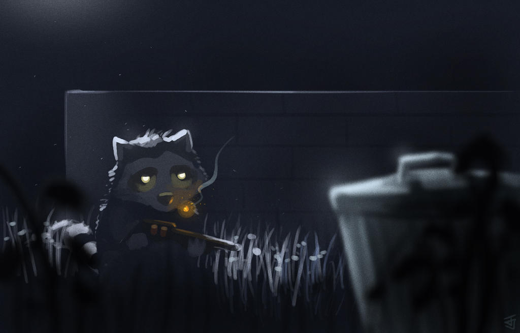 Raccoon Burglar by Jeffufu