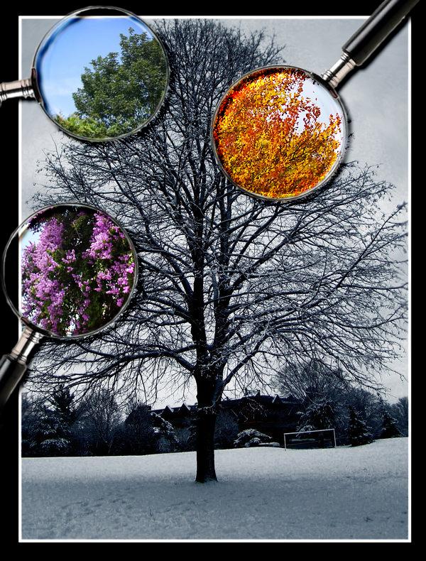 4 seasons by etiark