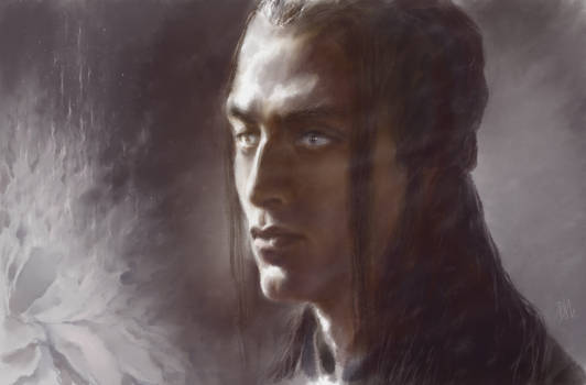 Feanor. Flame of the flower