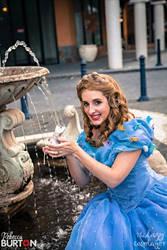 Cinderella 6