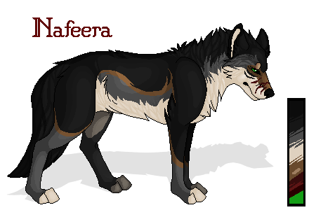 FMB - Nafeera Draig-uisge Nafeera_quick_wolf_reference_by_inanistesta-d6moooh