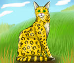 Leopard-Start by Suomen-Ukonilma