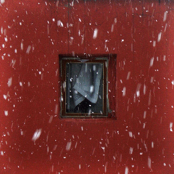 Snow by alperyesiltas