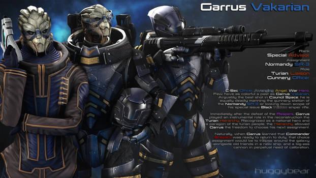 Afterword - Garrus