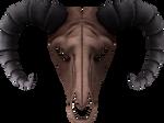 Ramshead Skull