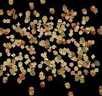 3D Leaf Swarm 3
