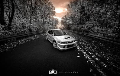 Evolution by GandCphotography
