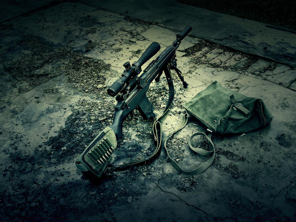 M14 by Profail ...