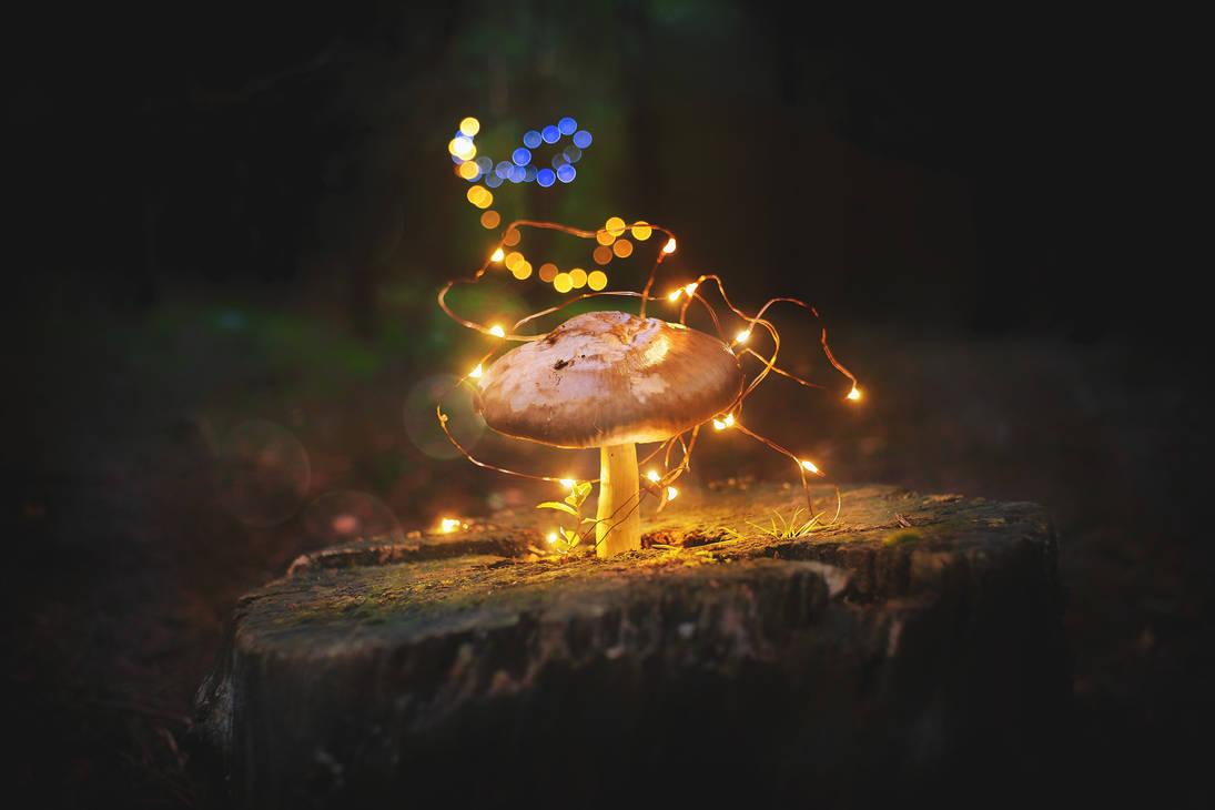 Pure magic by Profail