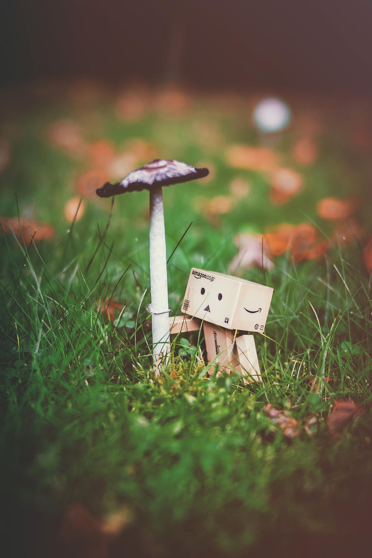 Danbo dreams of Autumn. by Profail